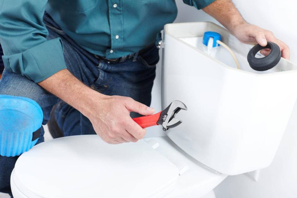Kentish Plumber - Tunbridge Wells -Toilet Repair